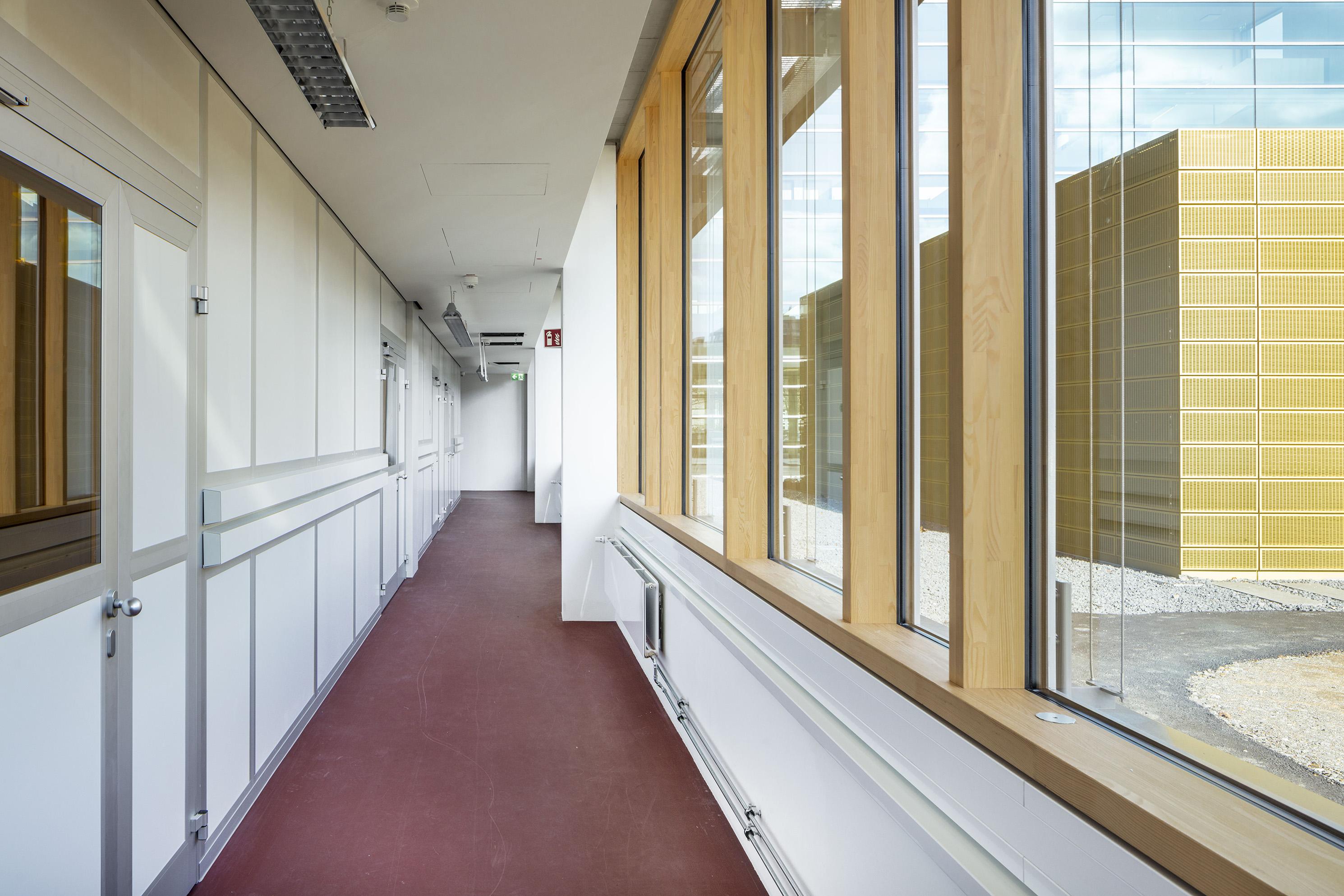 Materialforschung (CAM) Heidelberg 9 - ArGe Architekten