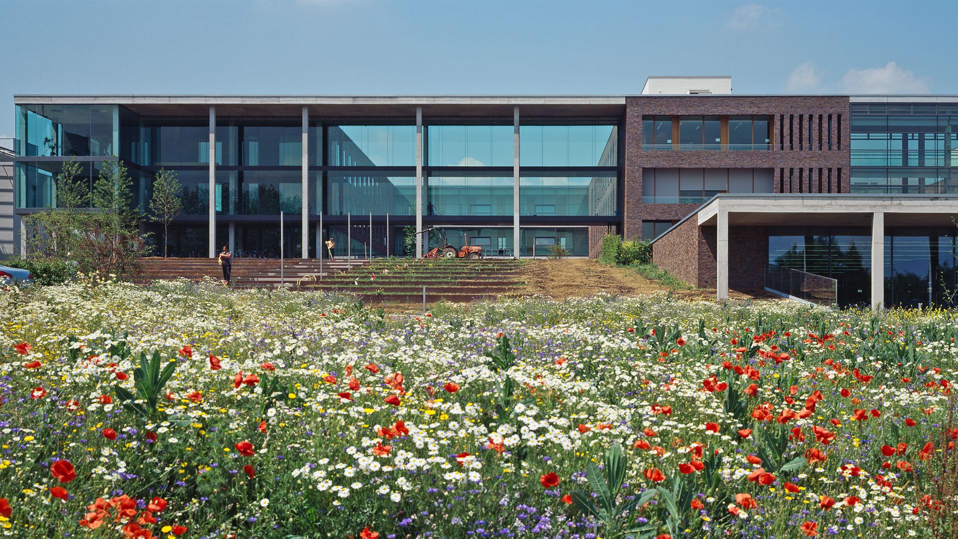Physikalisches Institut Frankfurt 6 - ArGe Architekten